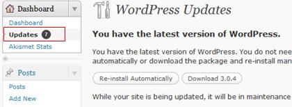 Wordpress plugin update notice