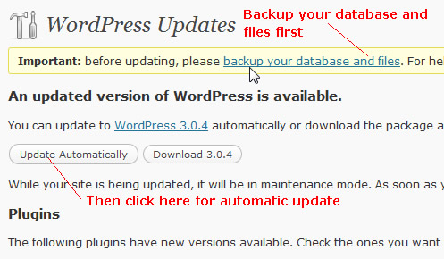 update wordpress automatically