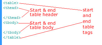 Basic Table Structure in HTML