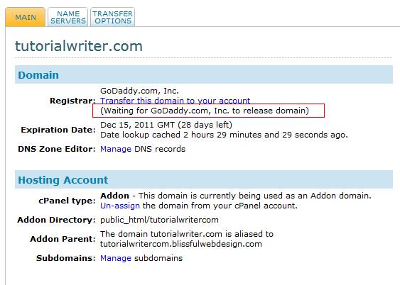 domain name transfer status