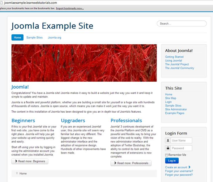 Joomla Example Site